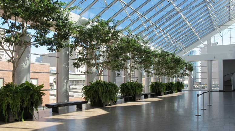 The basics of good commercial landscape design - Interior plant maintenance contract ...