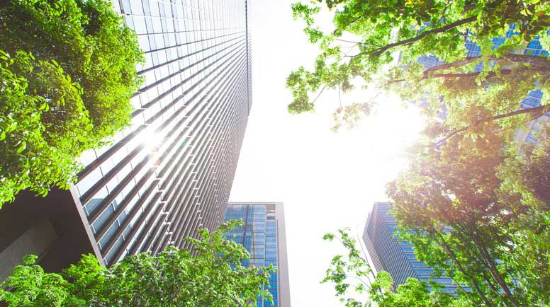 Business-towers-and-Green-leaves-000065586751_Large.jpg