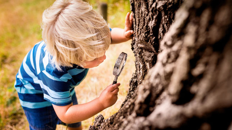 Boy-with-a-magnifying-glass-studying-a-tree's-trunk-000062798618_Large.jpg
