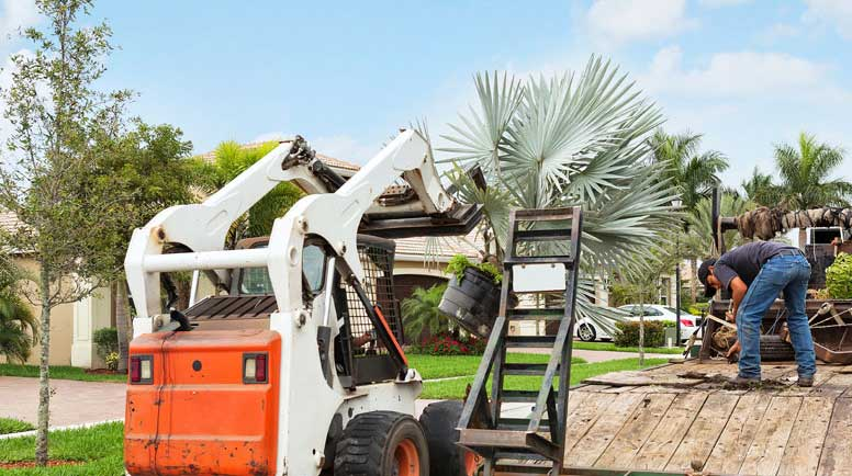 Landscaping-truck-with-tropical-plants-000025455310_Large - Copy (2).jpg