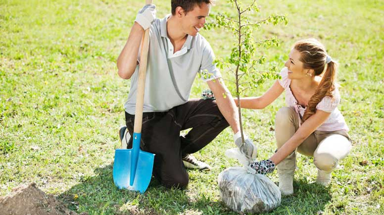 Beautiful-couple-planting-a-tree-000020346397_Large.jpg