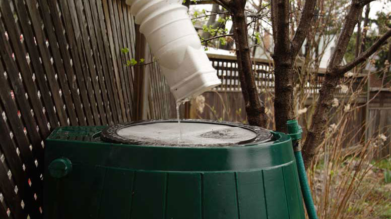 Rainbarrel-In-Action-000001595712_Large.jpg