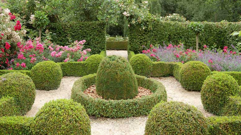 10 ways to use shrubs in your landscape for Types of bushes for landscaping