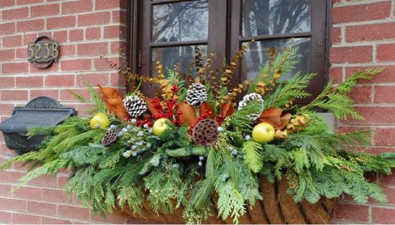 8 festive ideas to for winter container gardens