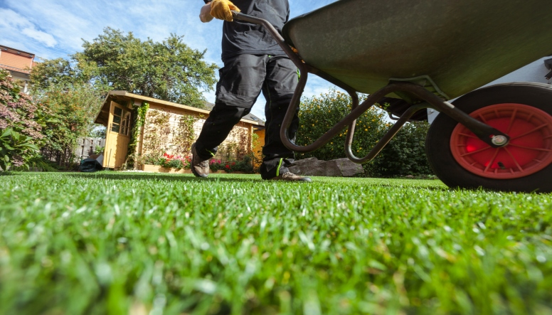 WHAT YOUR LAWN WANTS YOU TO KNOW THIS TIME OF YEAR