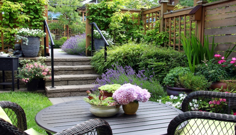 MAKING YOUR BACKYARD YOUR HAPPY PLACE